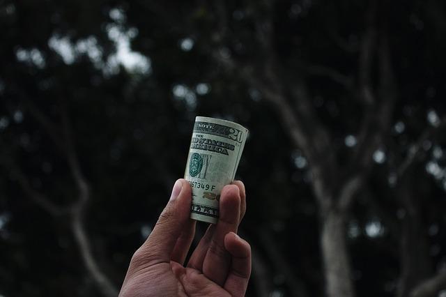 drevo denarja